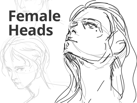 how-to-draw-female-heads.png