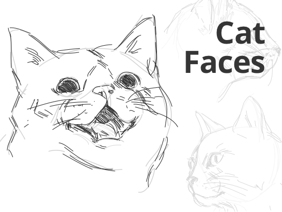 how-to-draw-cat-faces.png