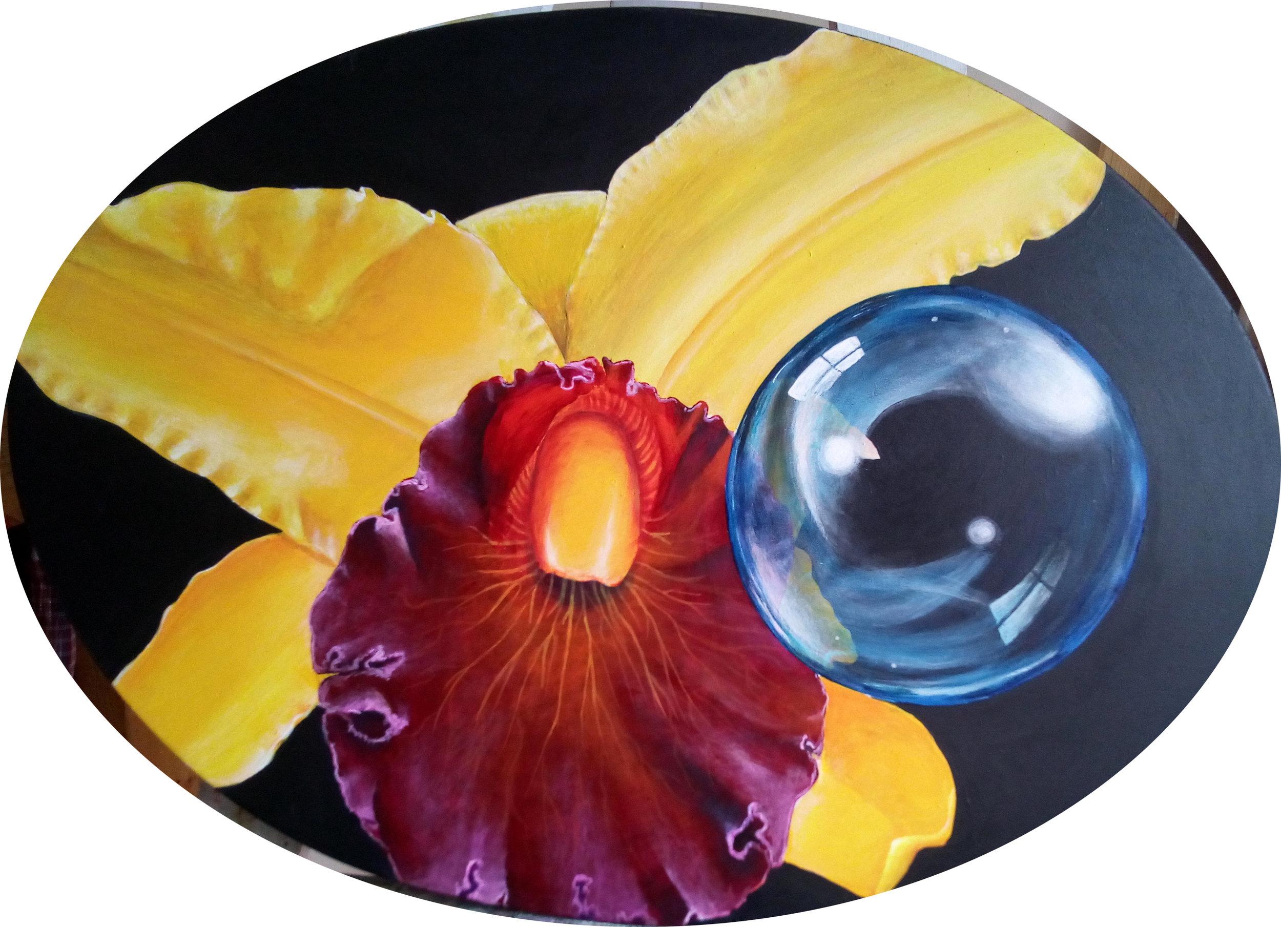 orquideatraves.jpg
