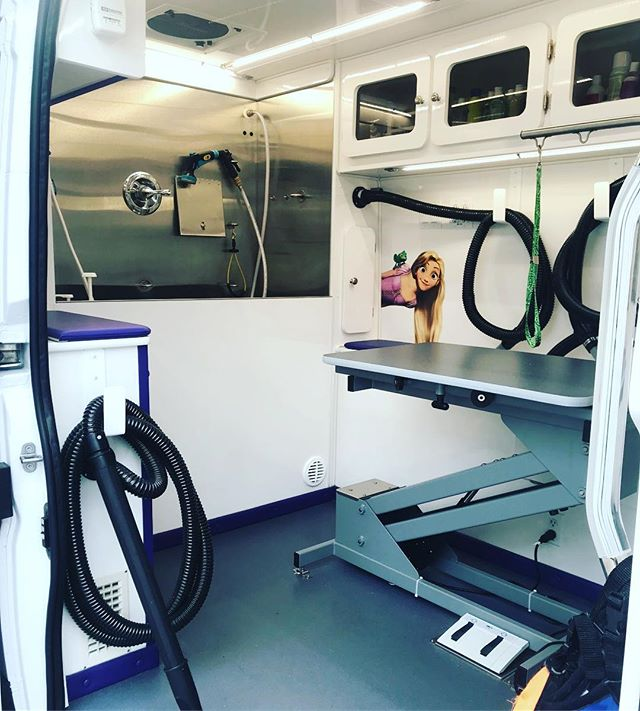 Our luxury mobile spa in action #mobilegroomer #grooming #fortlauderdalebeach #bocaraton #dogs #dogsofinstagram #groomingsalon #luxurygrooming #fashiondogs