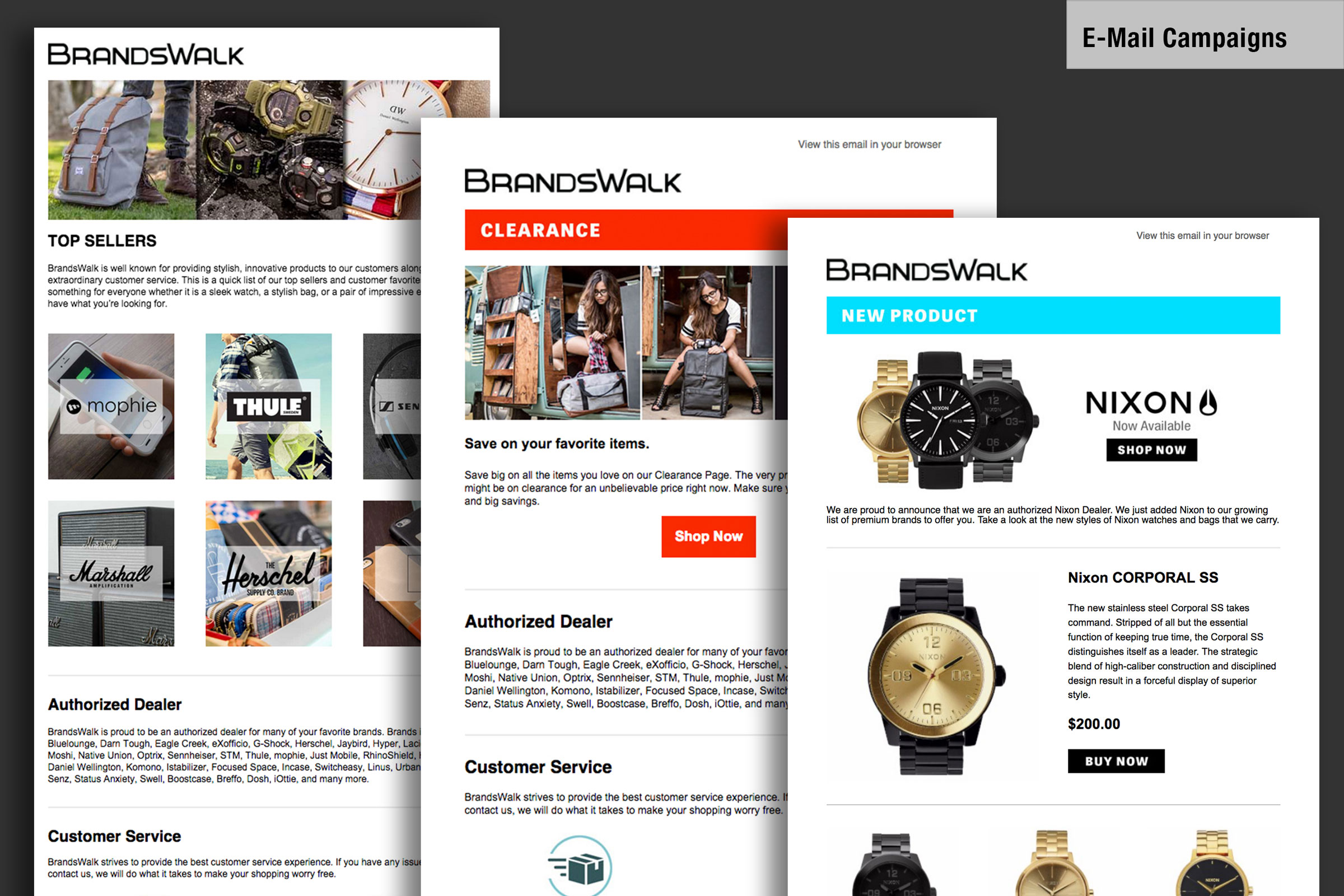 Project   Branding / Email Campaigns   Media Assets   Email template design and integration with mail chimp