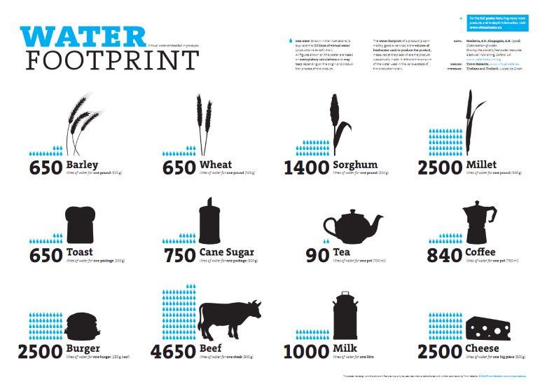 A81 - PIC water footprint.jpg