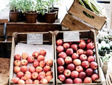 A61- Pictures eating vegetables in season.jpg