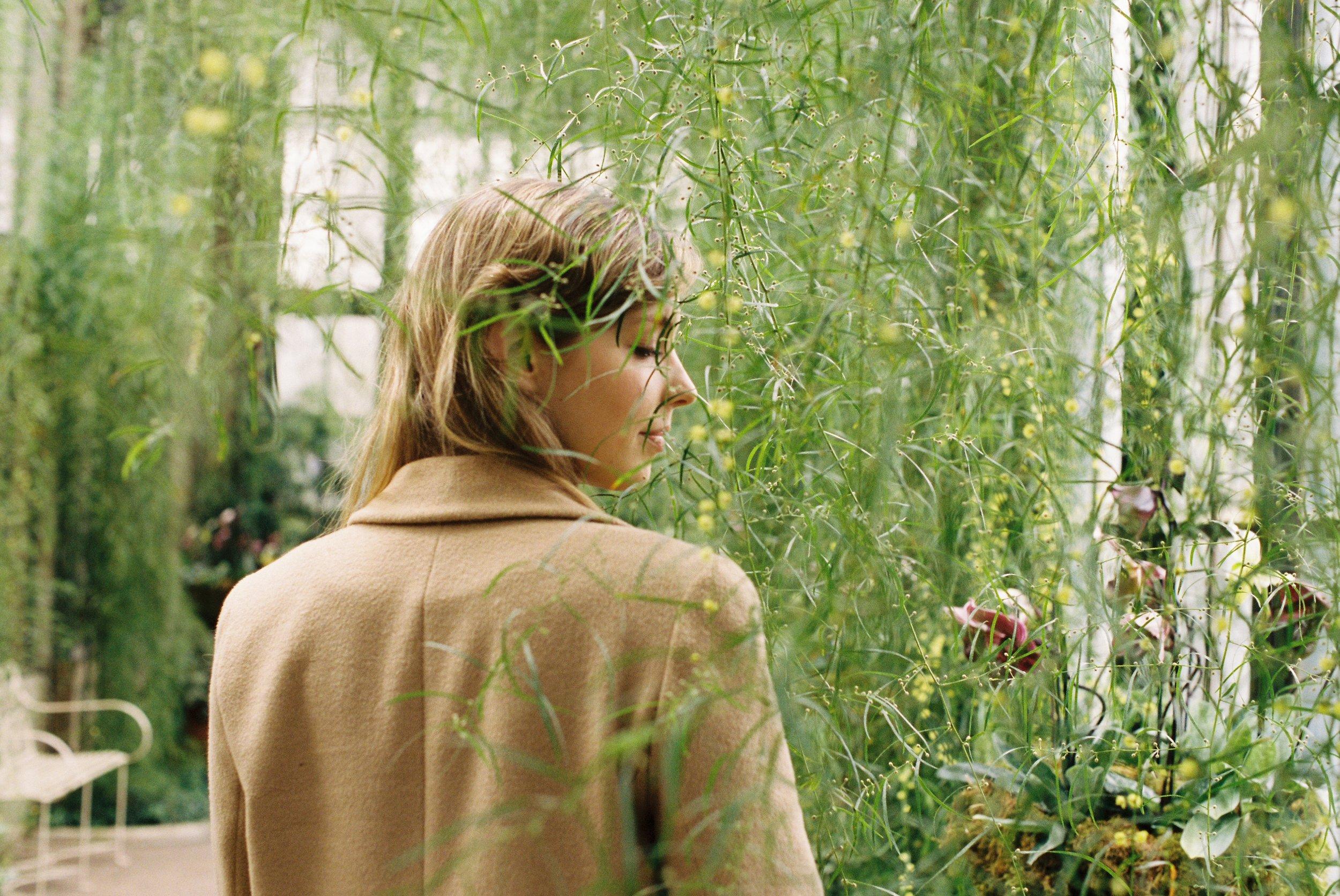 04 - The Light in the Leaves Pt. IV.jpg