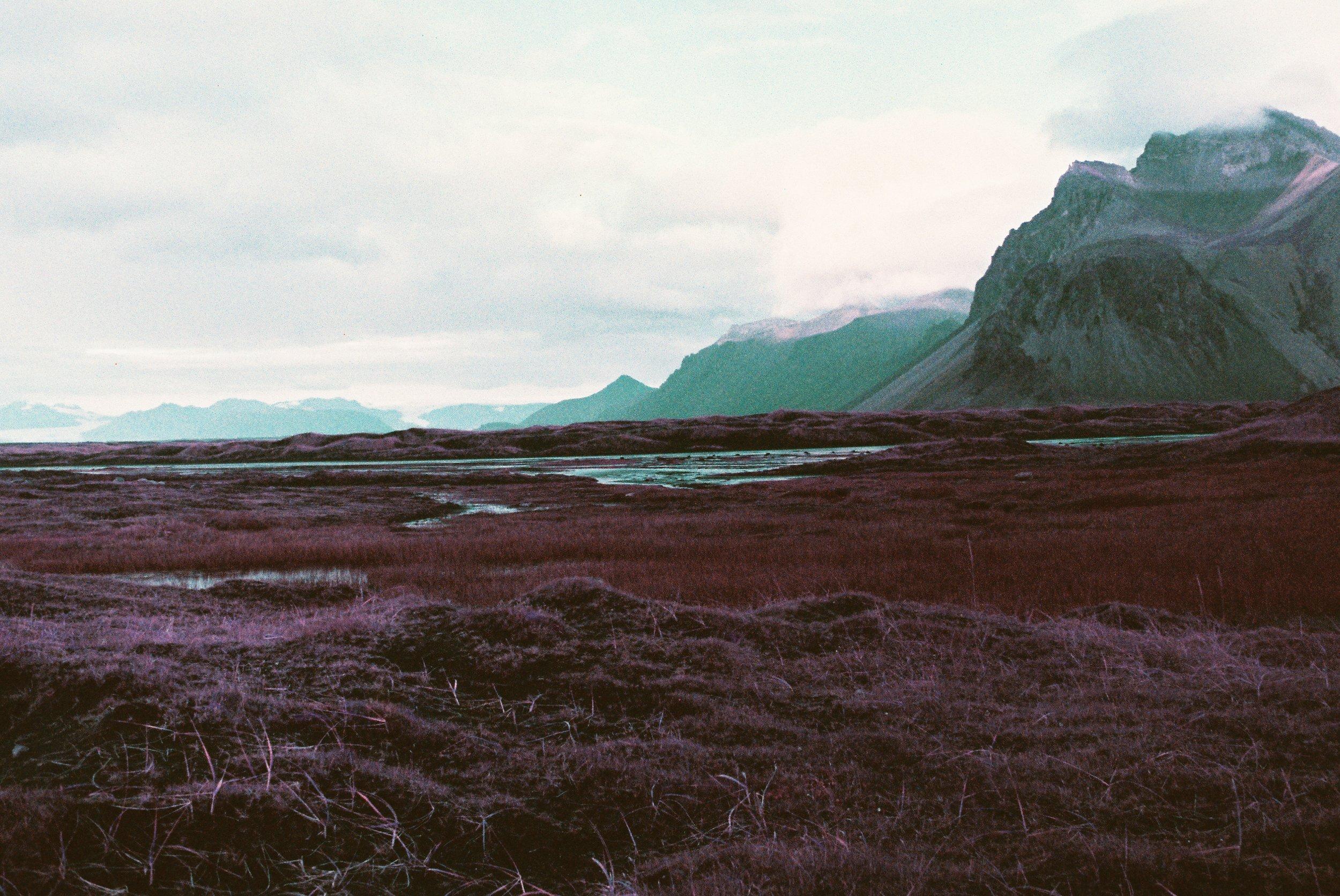 Lomochrome Purple - Stoksness 1.jpg