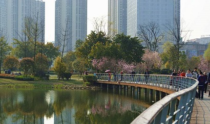 Dayuan Park CD5 2.jpg
