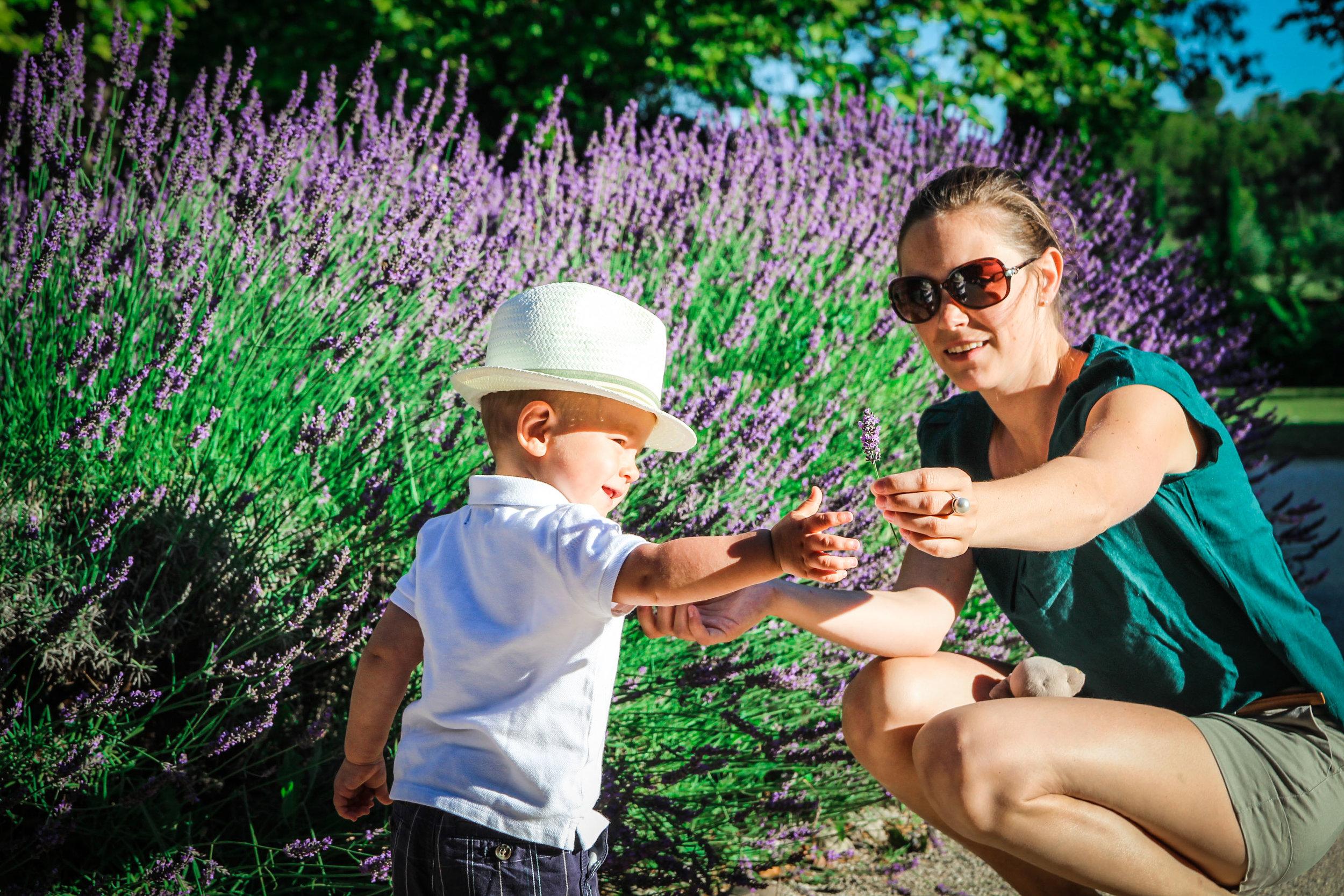 Lavendel - idyllische - château de massillan - Reizen met kinderen - Slapen in een kasteel
