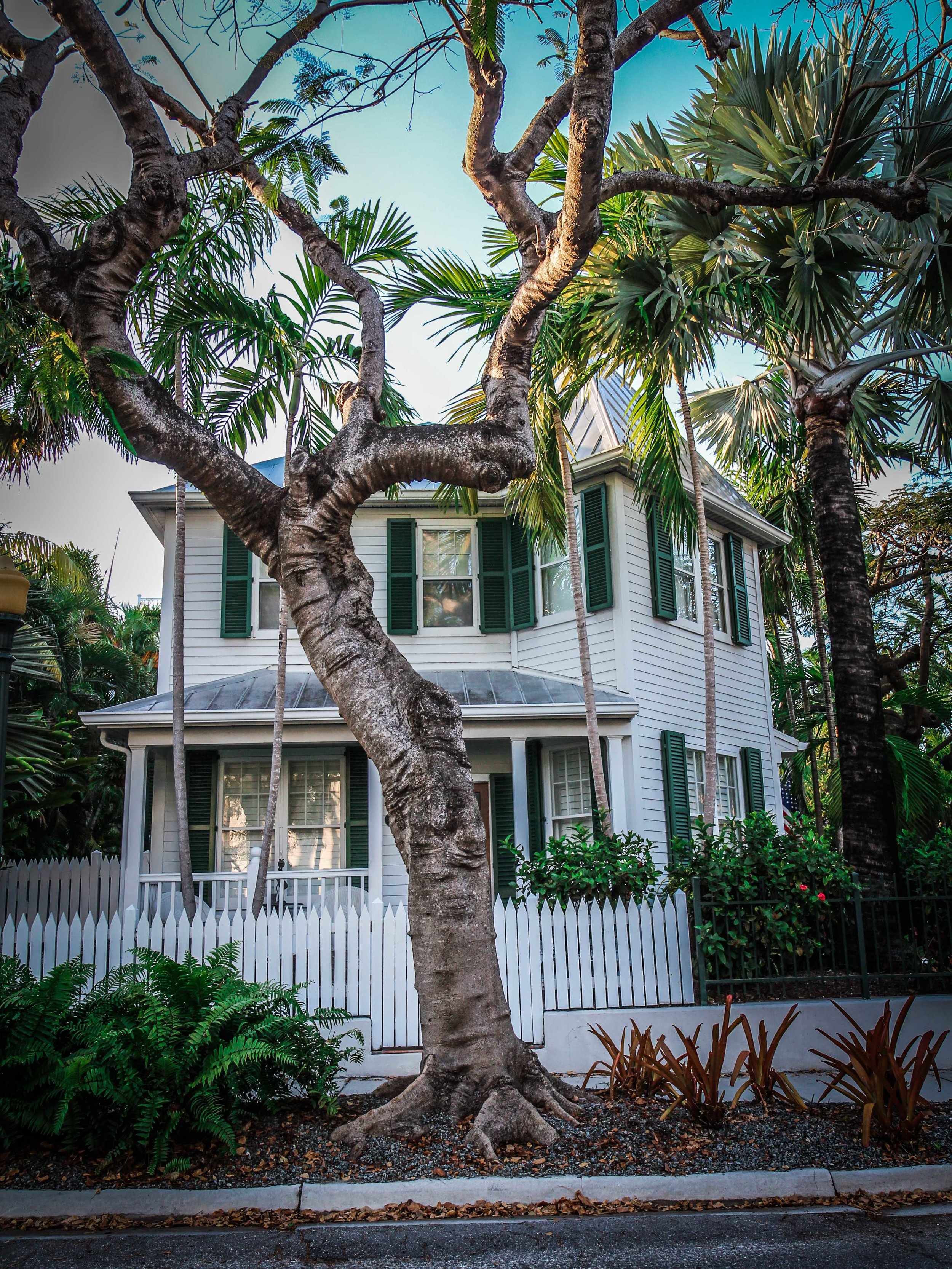 Florida_keys-_Key_west_To_do_reizen_met_kinderen-32.jpg