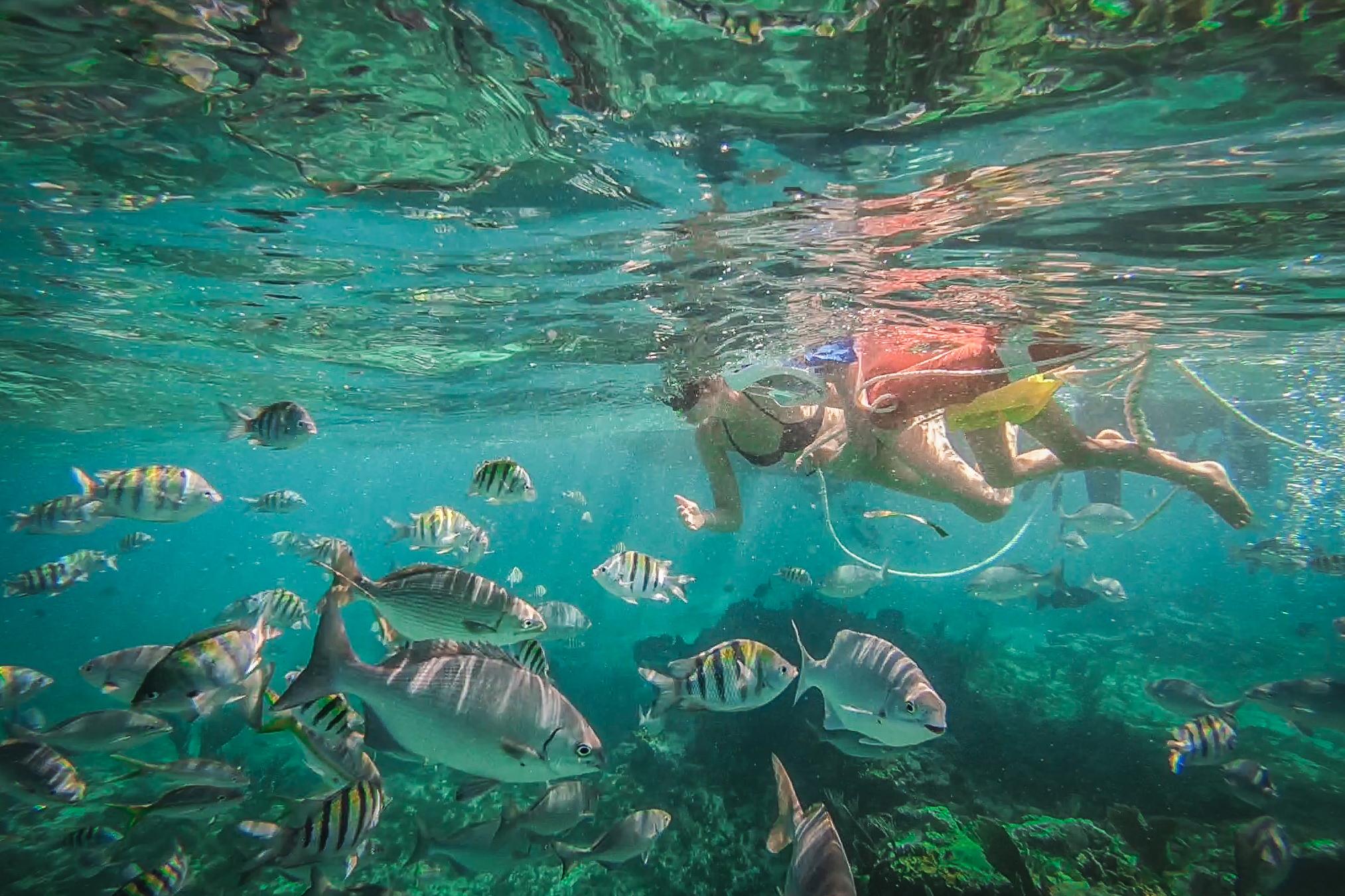 Cuba snorkelen