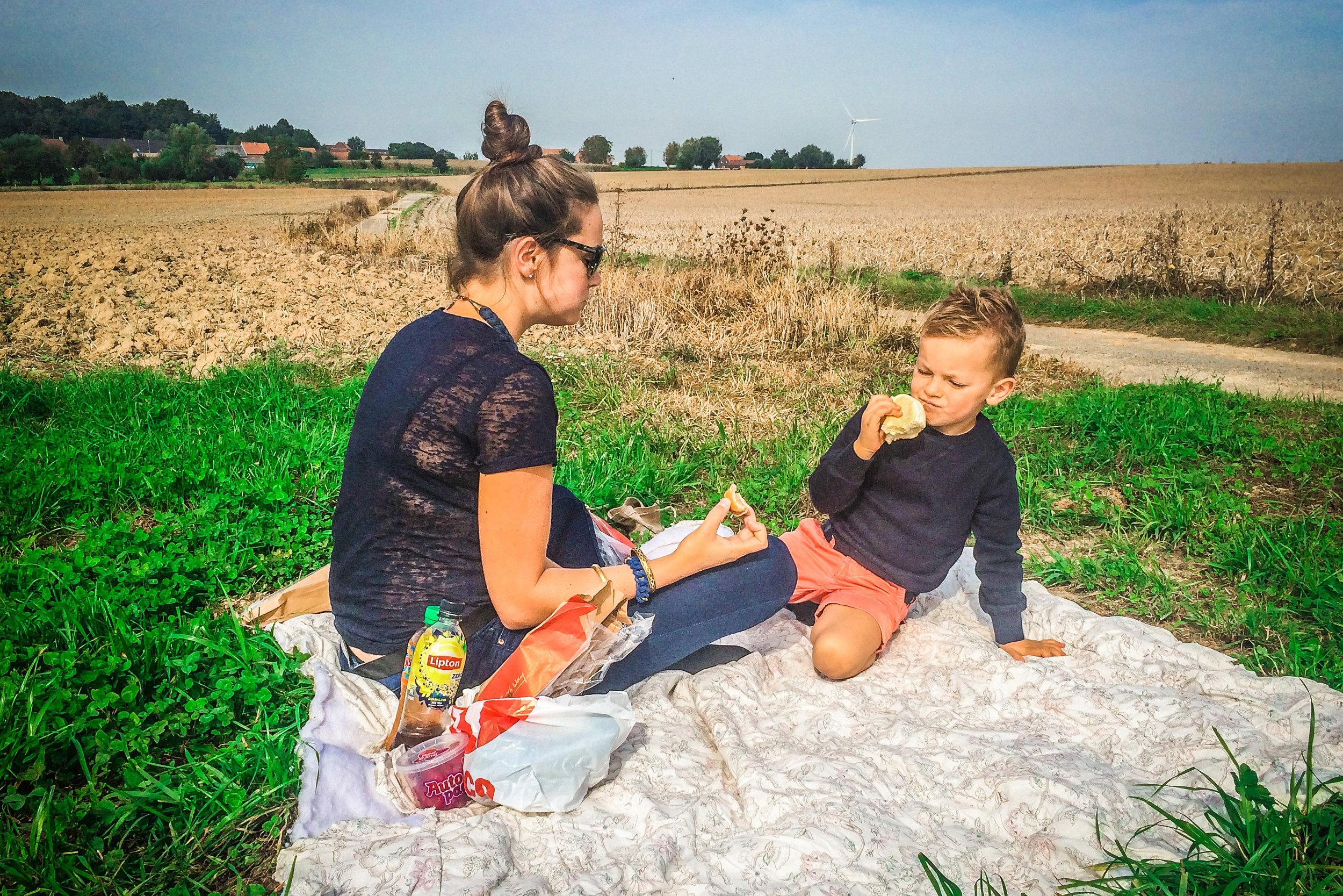 picknick langs de weg - Picknick velden