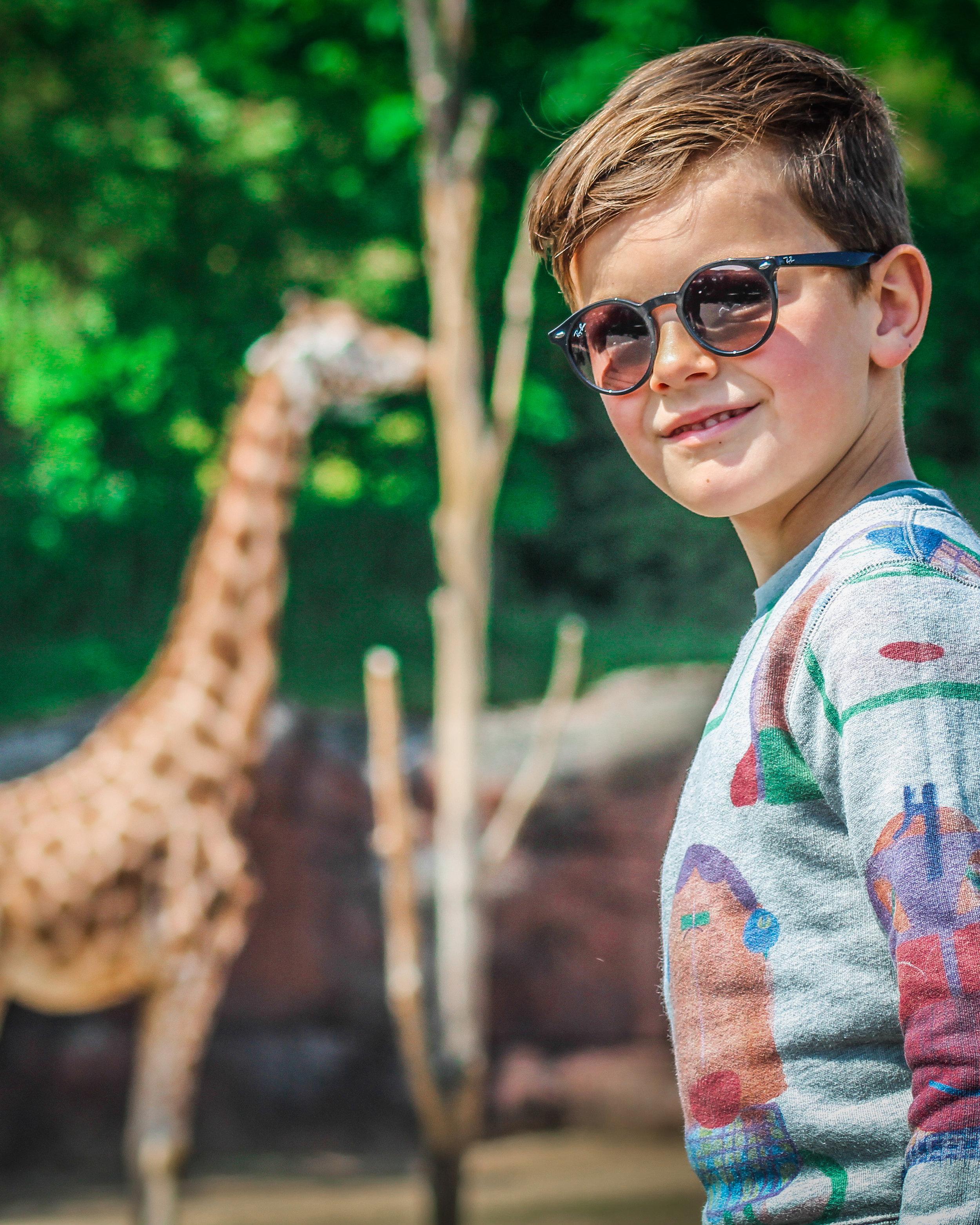 Kerkrade Gaiazoo - Giraffe eten - Kindvriendelijk