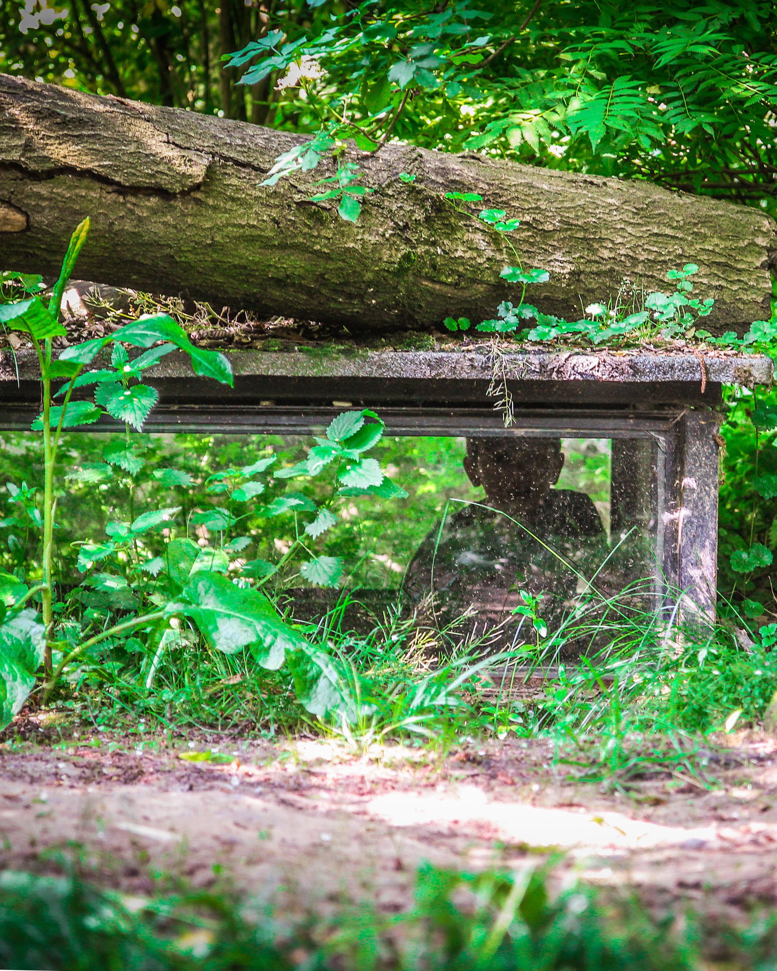 Limburglonkt - Kerkrade Gaiazoo - kinderen tussen de dieren