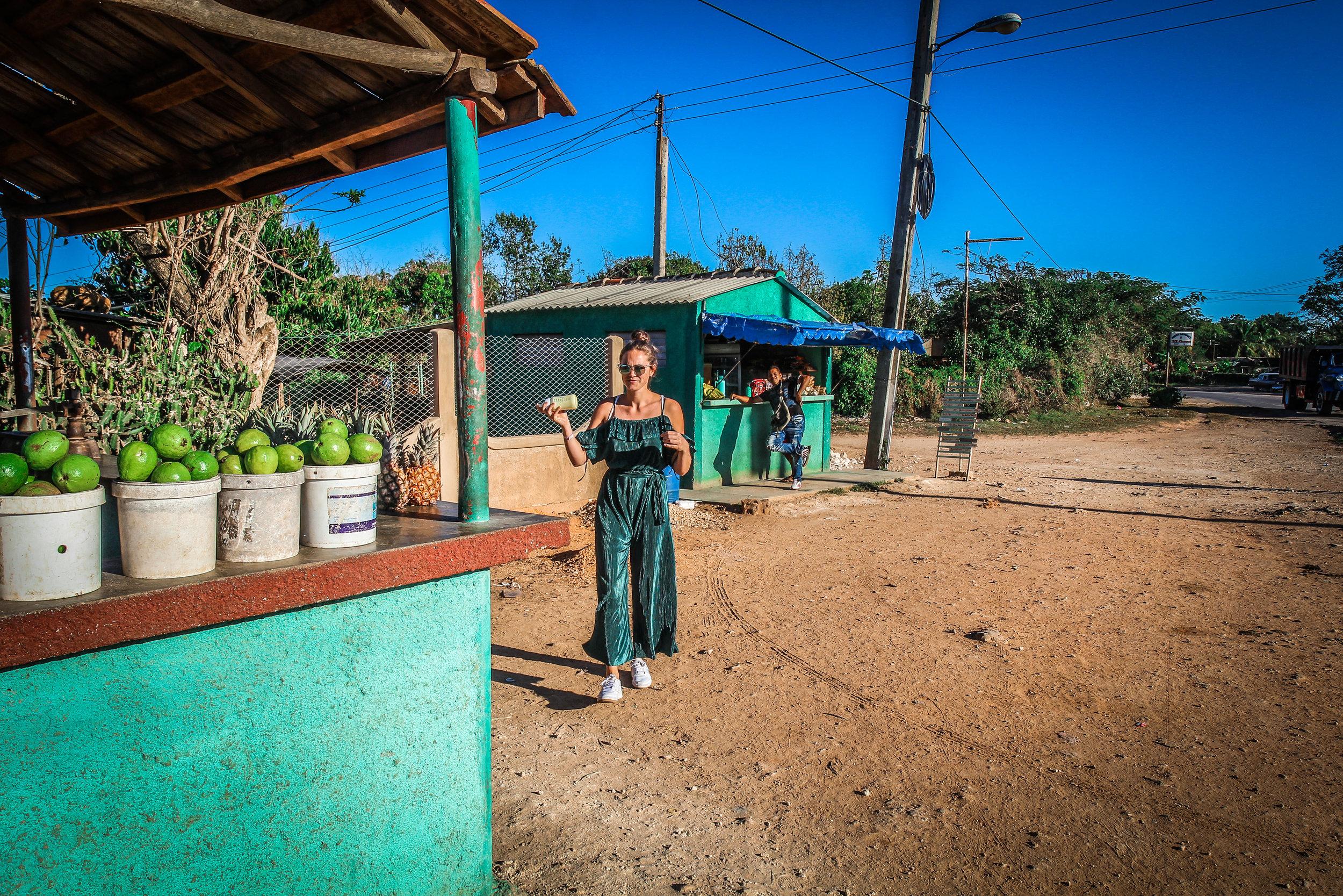 Onderweg naar Trinidad cuba - Vers fruit kopen langs de weg