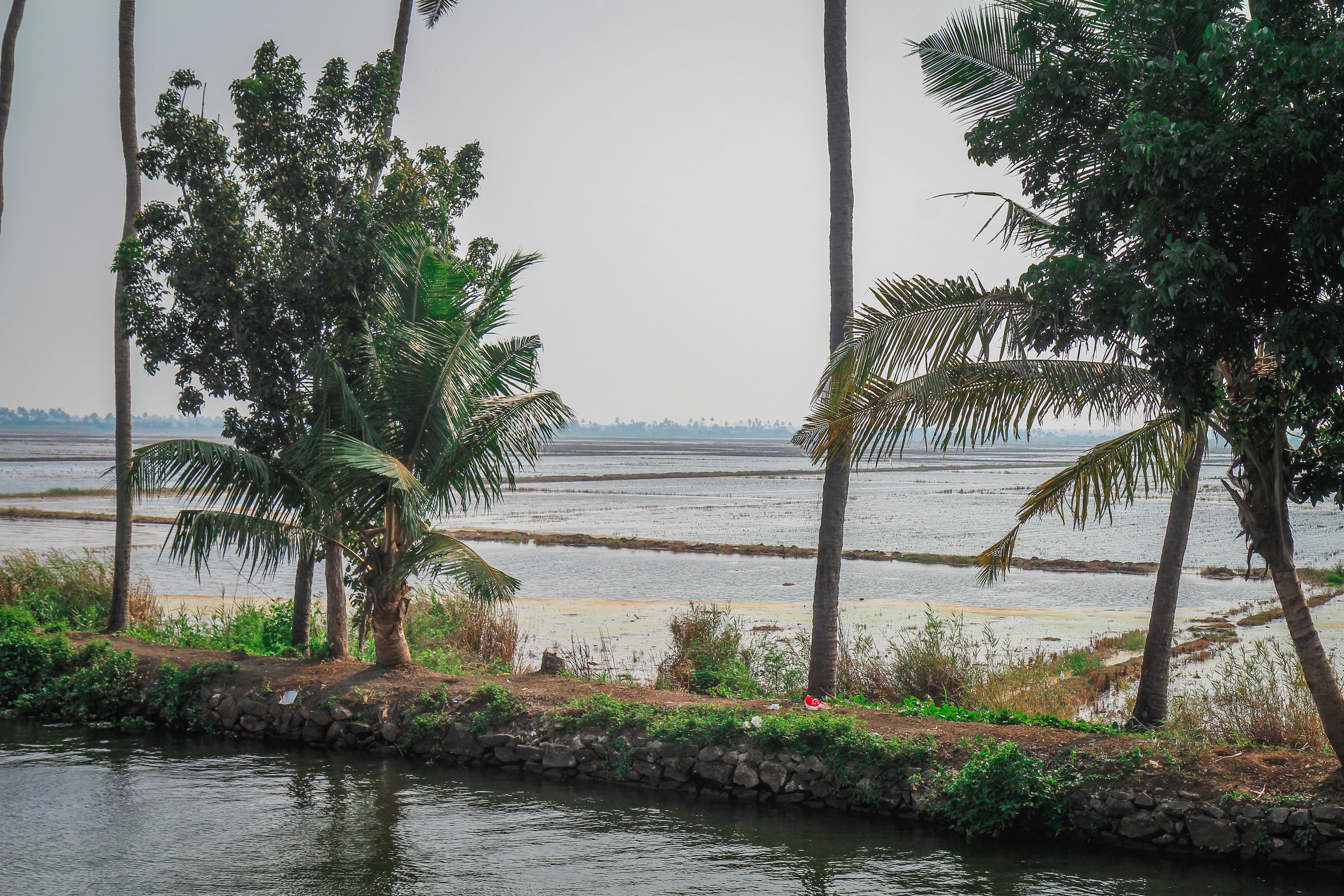 withkidsontheroad_Kerala_houseboat---12.JPG