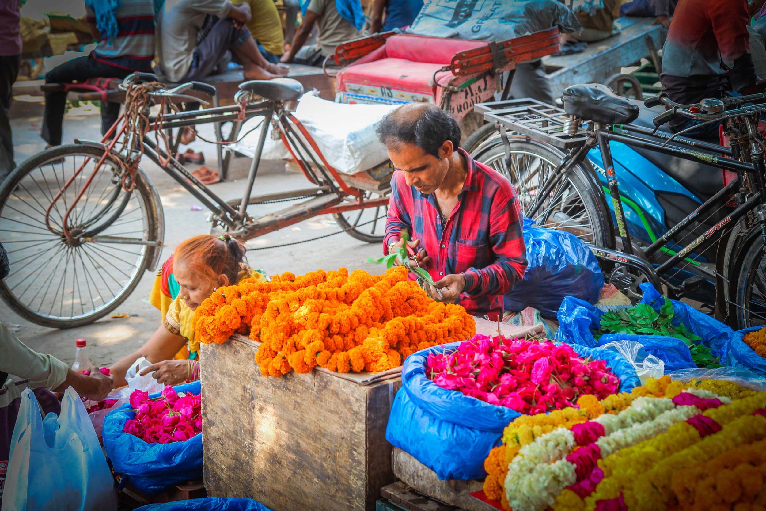 withkidsontheroad_India_chandni_chowk-7.JPG