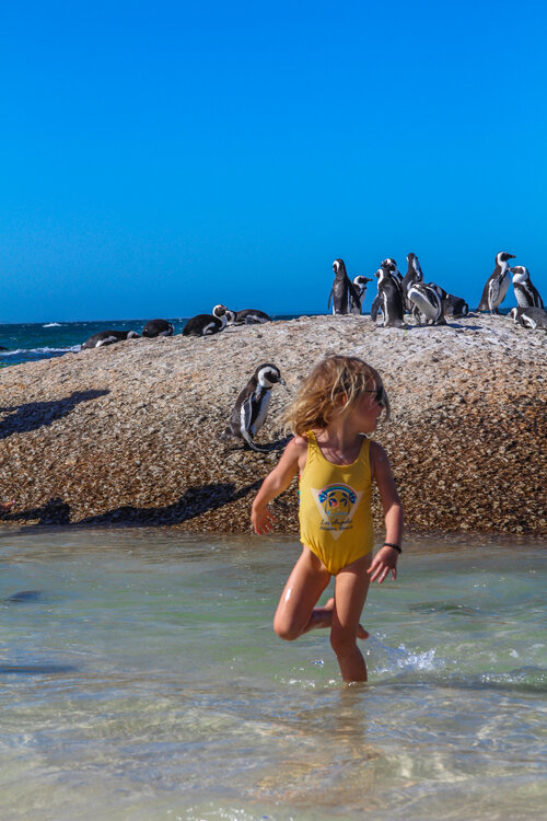 withkidsontheroad_More_Quarters_CapeTown-27.JPG?format=500w