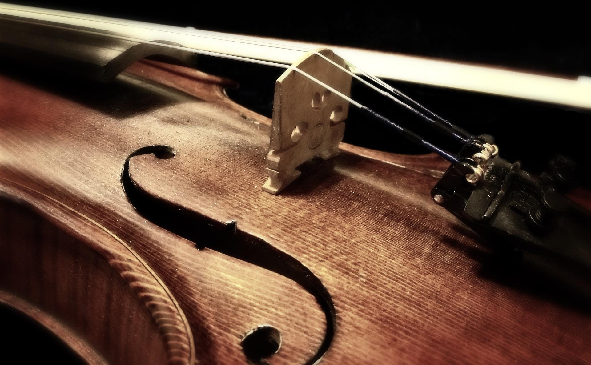 Violin / Cello