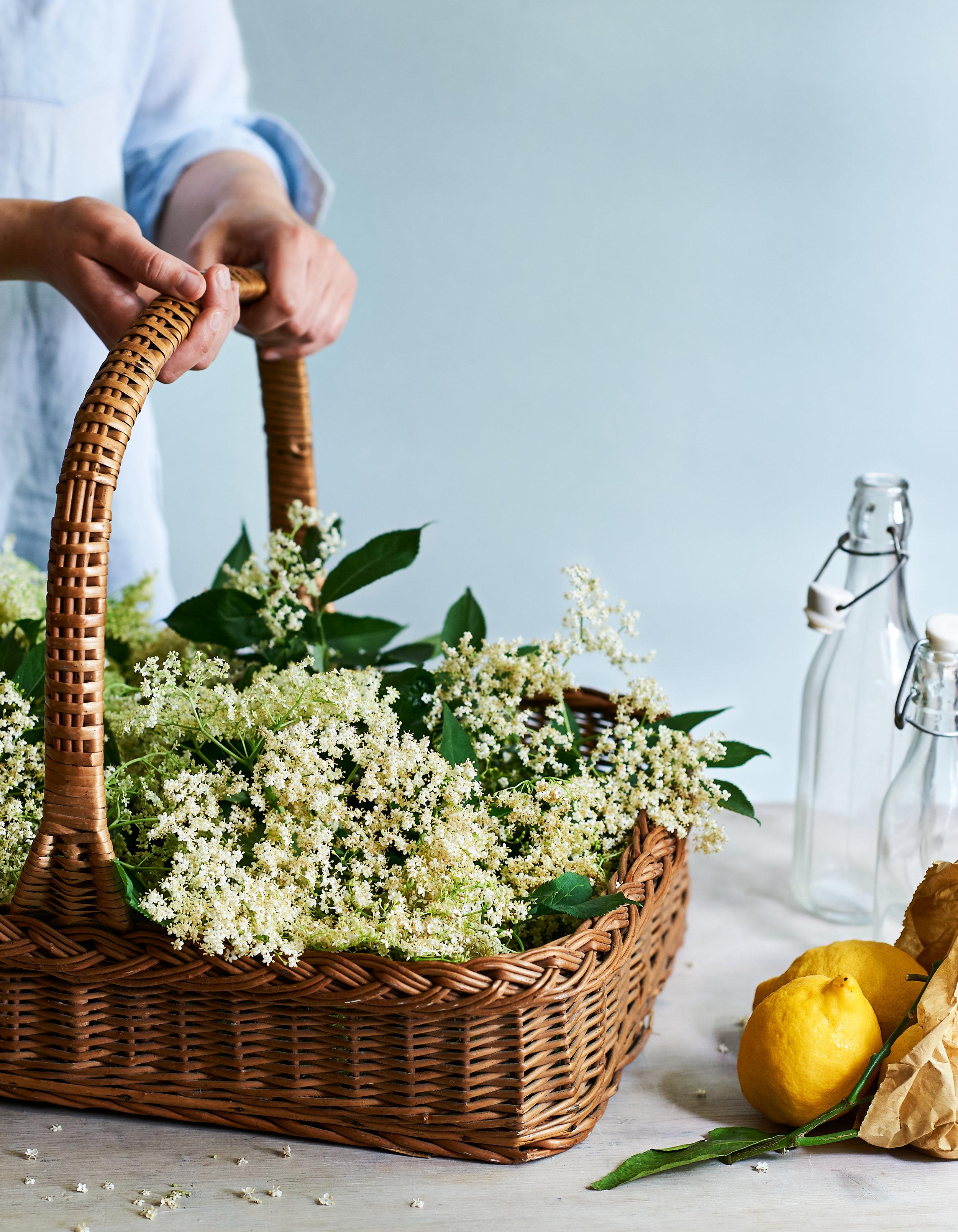 Elderflowers in a basket.jpg