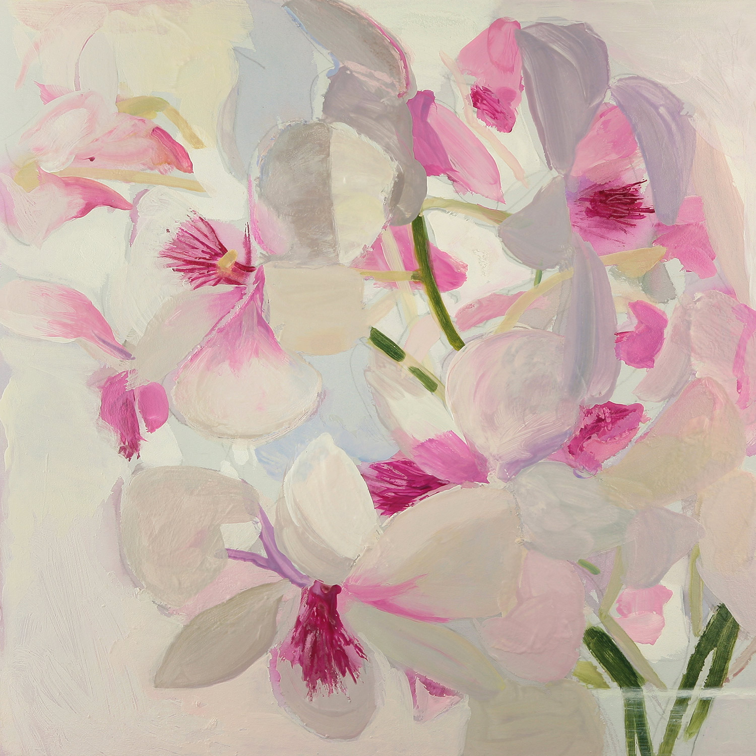pink-and-white-orchids.jpg