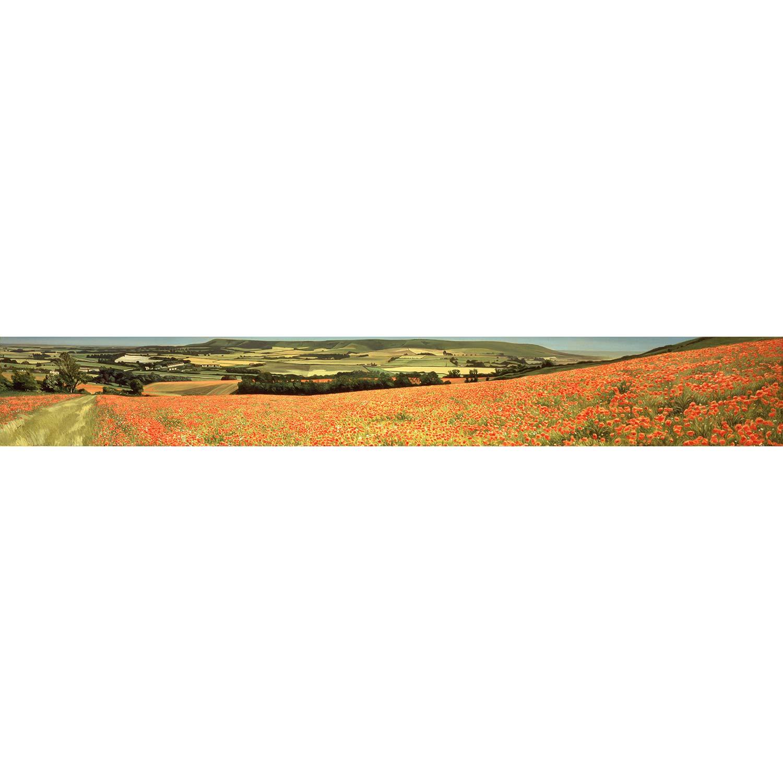Poppy Fields, Glynde - oil on canvas