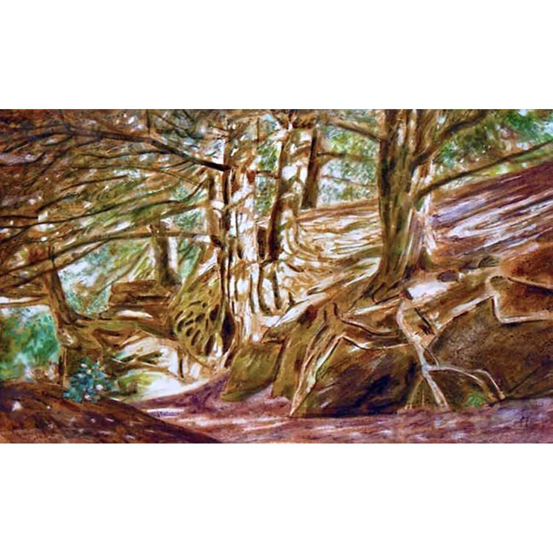 Wakehurst Yews - mixed media