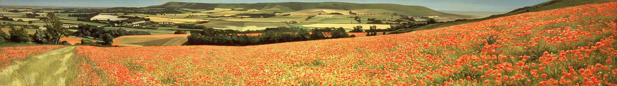 Poppy Field, Glynde, East Sussex, viewed from Mount Caburn, 1992 - original oil on canvas, 213 x 32 cm