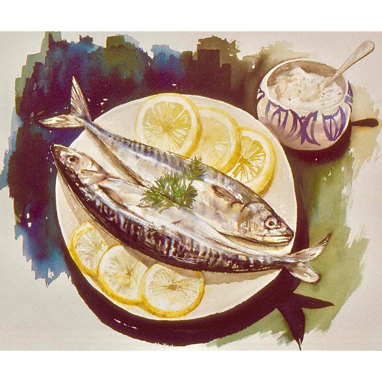 Mackerel - watercolour