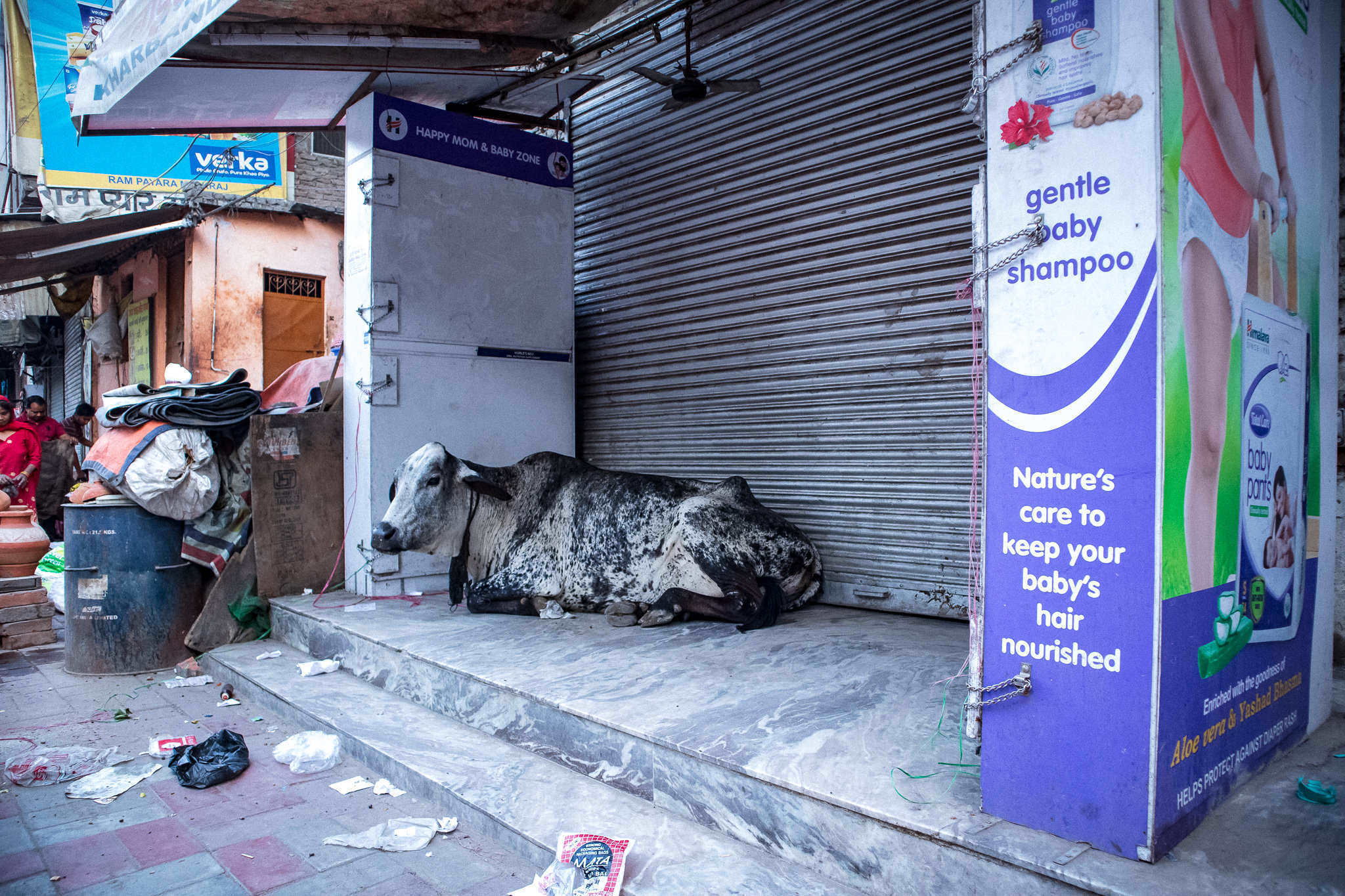 24_crazy_hours_india.jpg