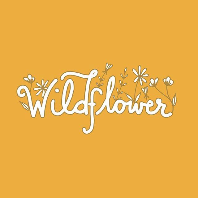 Heading to the mountains in search of wildflowers on this beautiful Monday 🌞🌸 . . . . #whitespacespring #freelancelife #creativeentrepreneur #branding #creativewomen #theeverygirl #coloradomakers #thatsdarling #designporn #designinspo #designyourlife #freelance #bouldermaker #brandidentity #branddesigner #brandstylist #fwportfolio #womeninbusiness #logoinspirations #designfeed #dribbble #handlettering #illustration