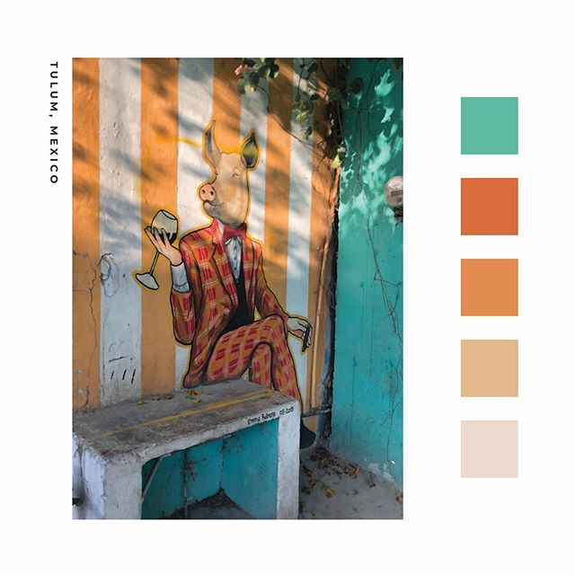 Love this happy color combo from a photo I took during our trip to Mexico earlier this year 😍 We're getting ready to head to Italy at the end of the week and I'm so excited to soak up some new inspiration . . . #colorpalettes #whitespacesummer #freelancelife #fwportfolio #creativeentrepreneur #branding #creativewomen #theeverygirl #coloradomakers #thatsdarling #designporn #designinspo #designyourlife #freelance #bouldermaker #brandidentity #branddesigner #brandstylist #fwportfolio #womeninbusiness #colorpalette #designfeed #dribbble
