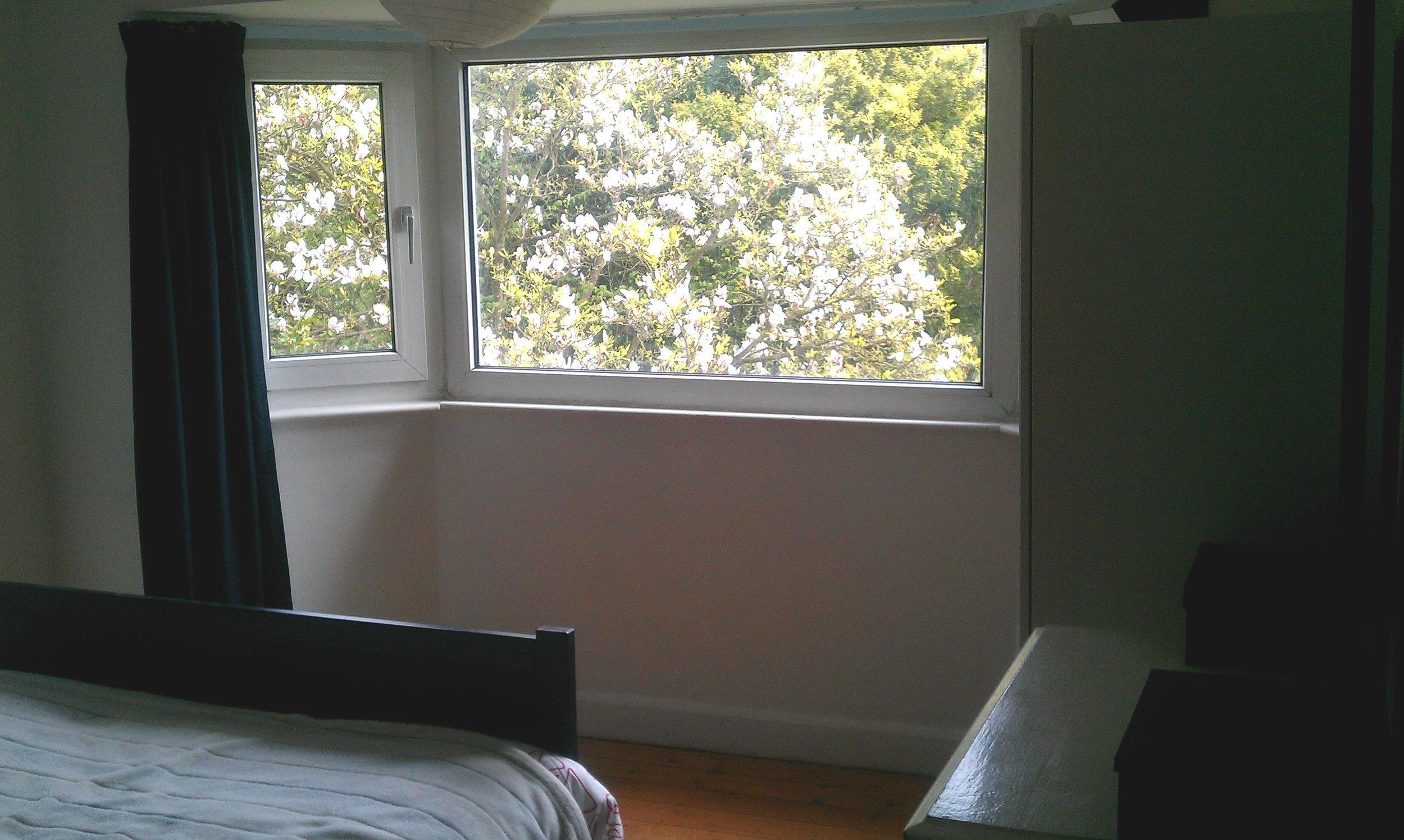 Innis bed window view.jpg