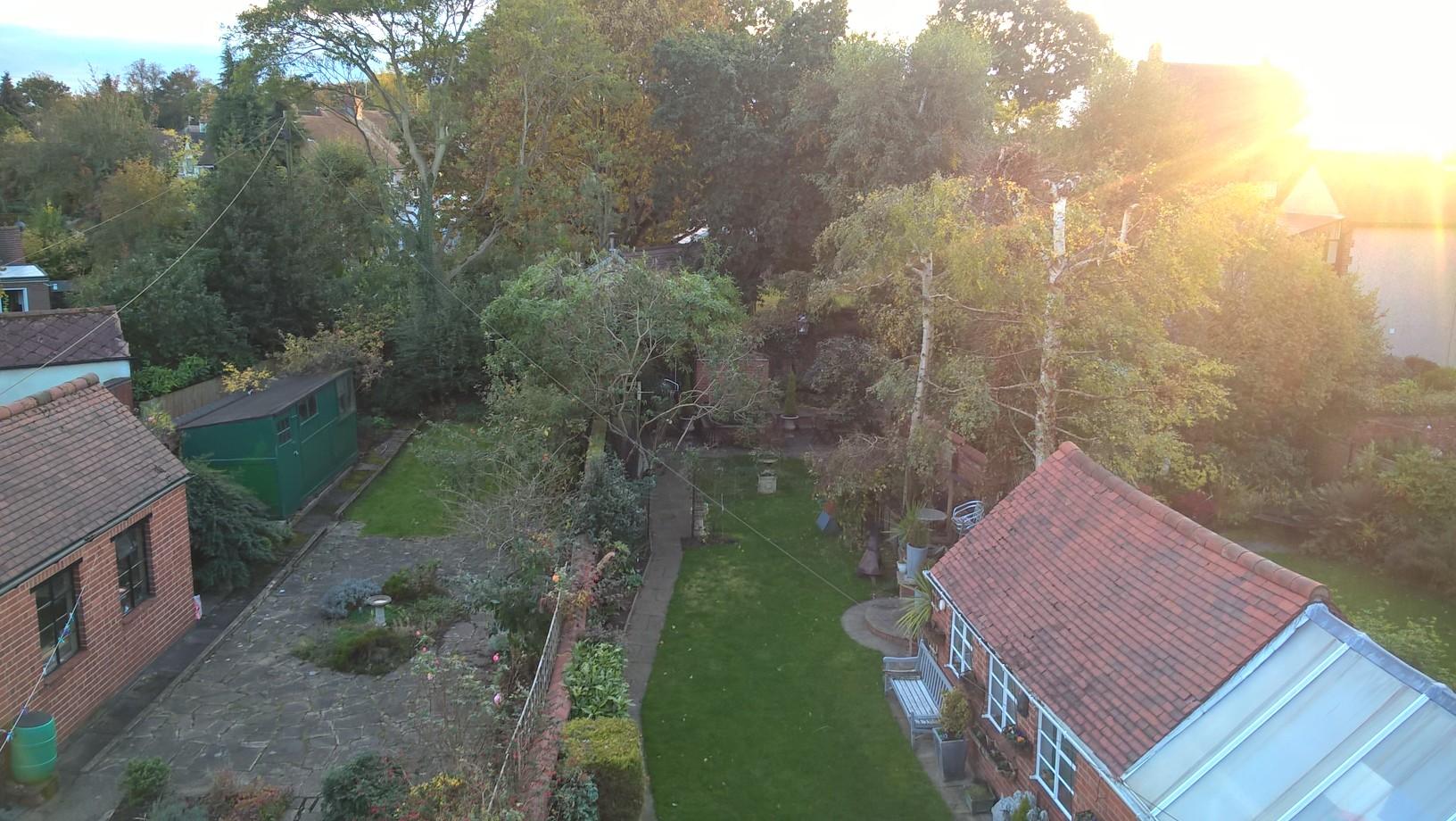 garden view landscape.jpg