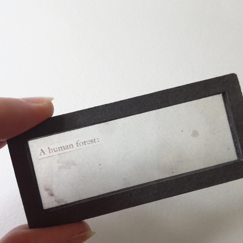 human-forest-artists-book-8.jpg