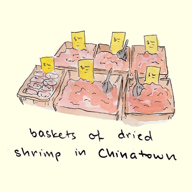 Anyone else wanna buy 50lbs of dried shramp and take a bath in them? No? Just me? 🍤🛁 #toronto #chinatown #shrimp #🍤 #iamtheshellfishkween #exfoliate #yyz #the6