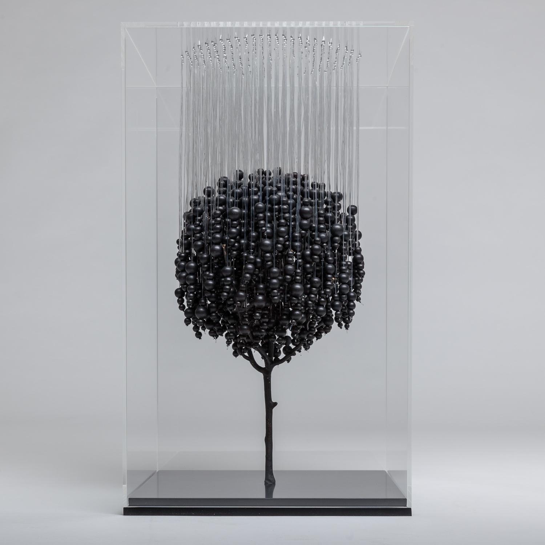 The hanging tree (black)