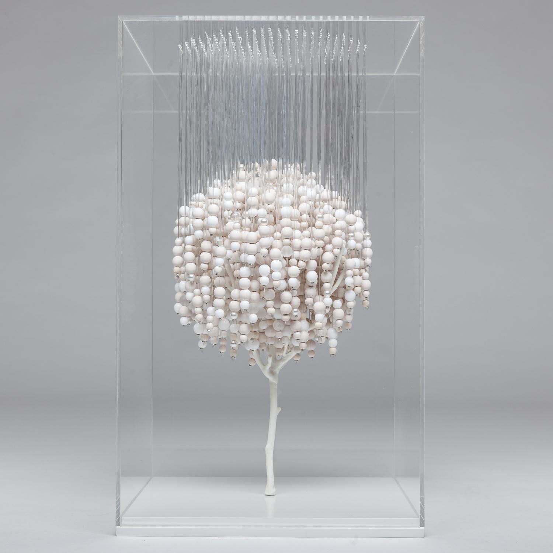 The hanging tree (white)