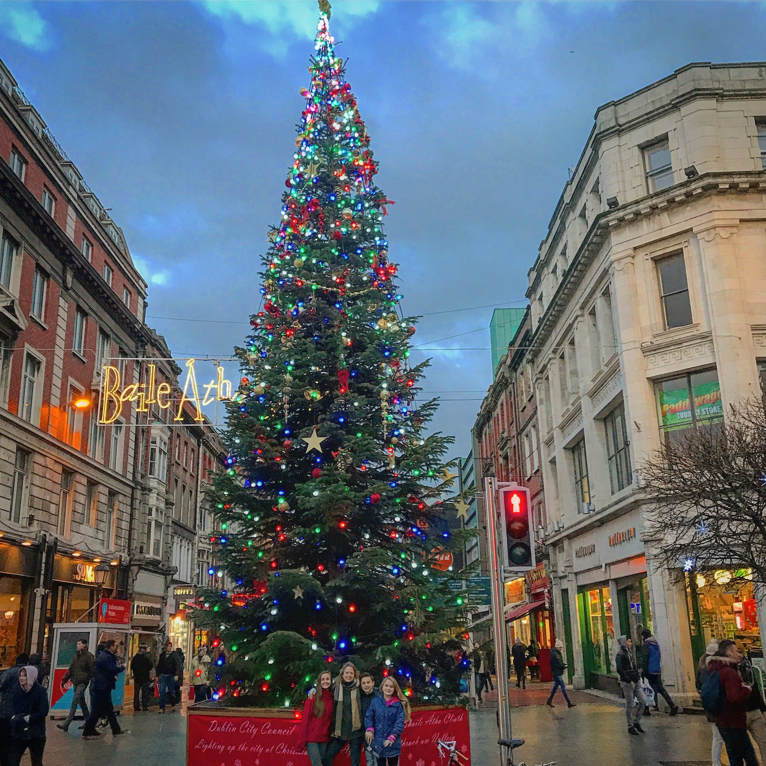 Dublin Christmas Tree