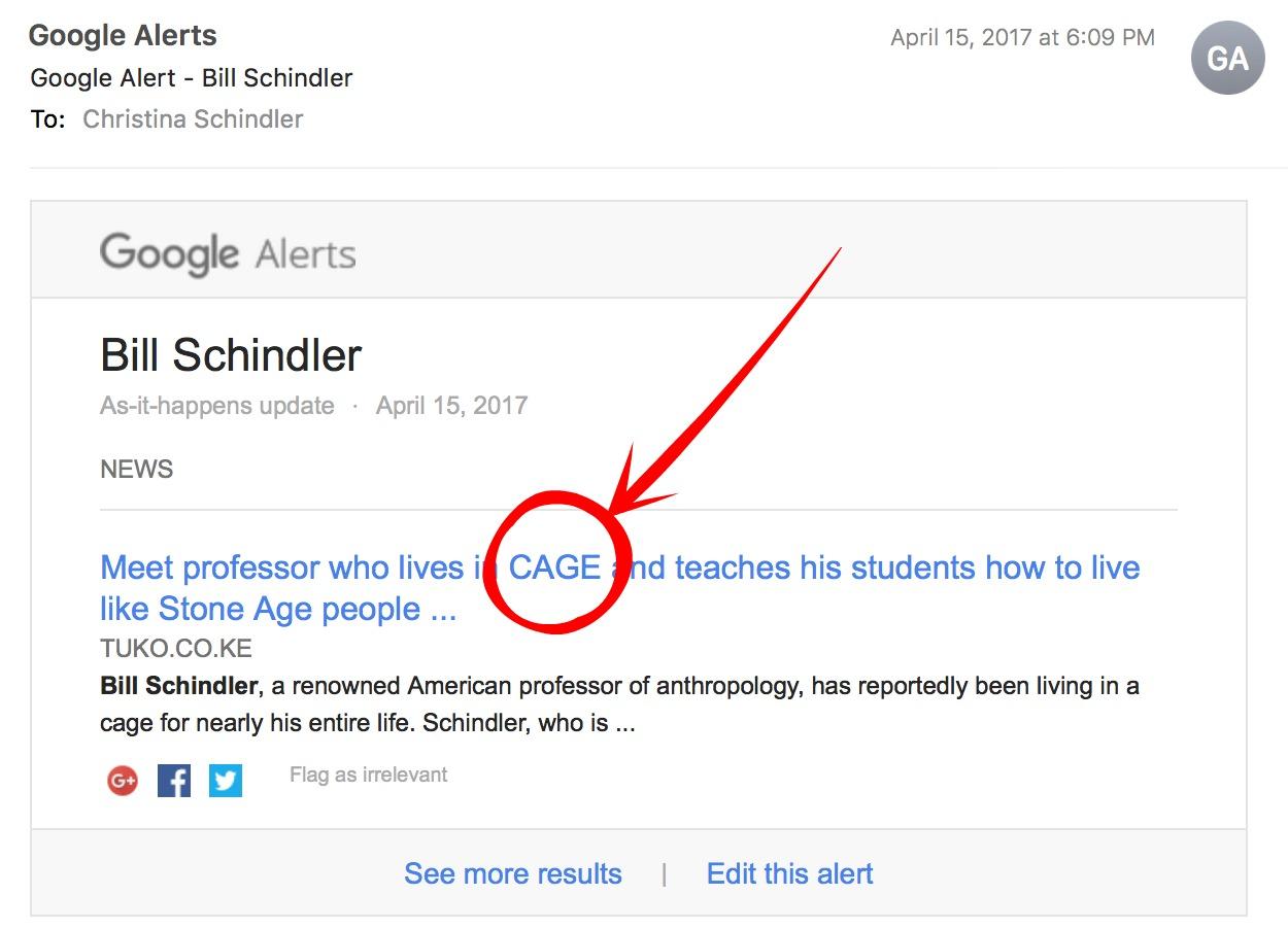 Google Alert Cave.jpg