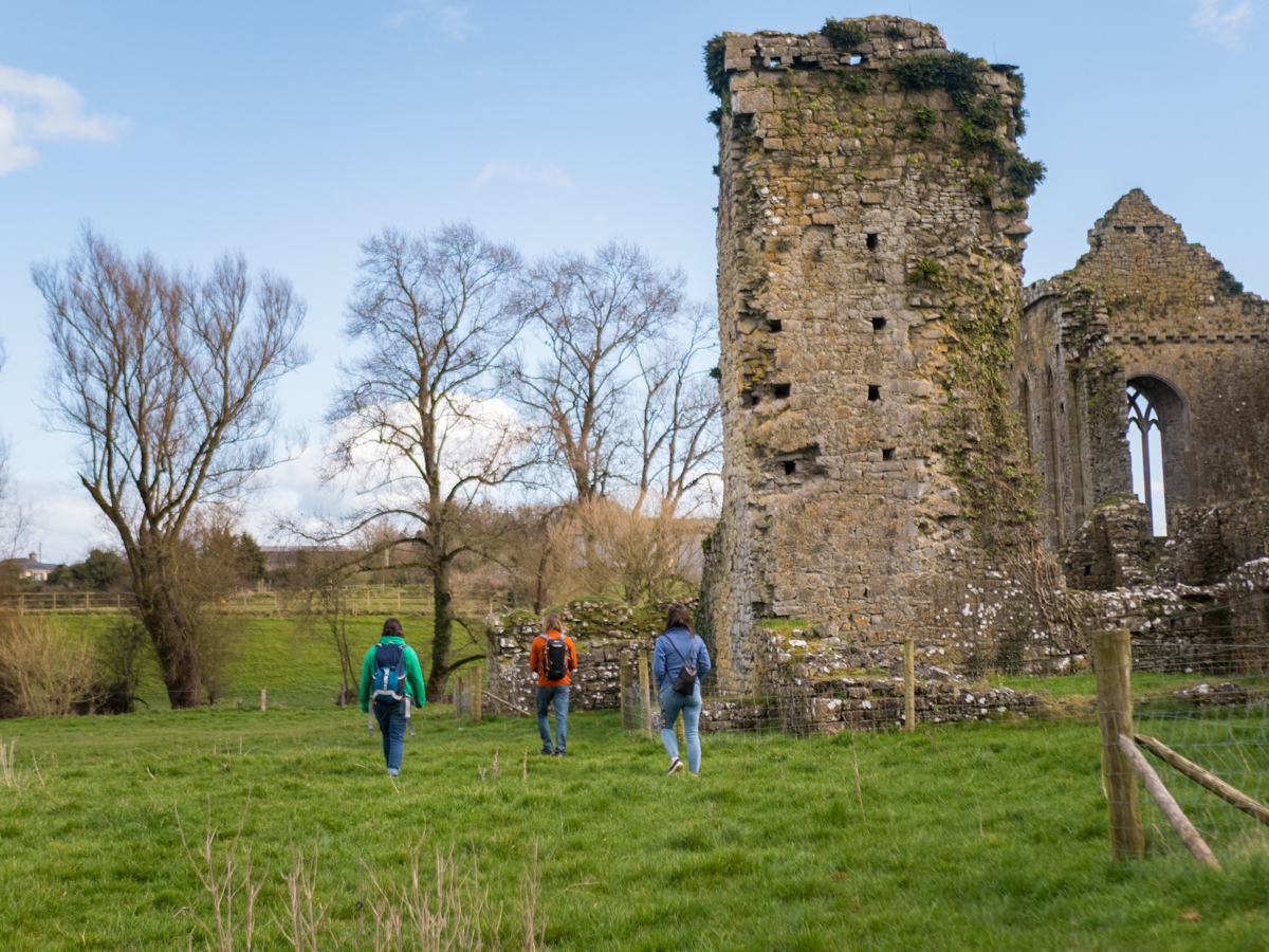 Athassel Abbey, Co. Tipperary