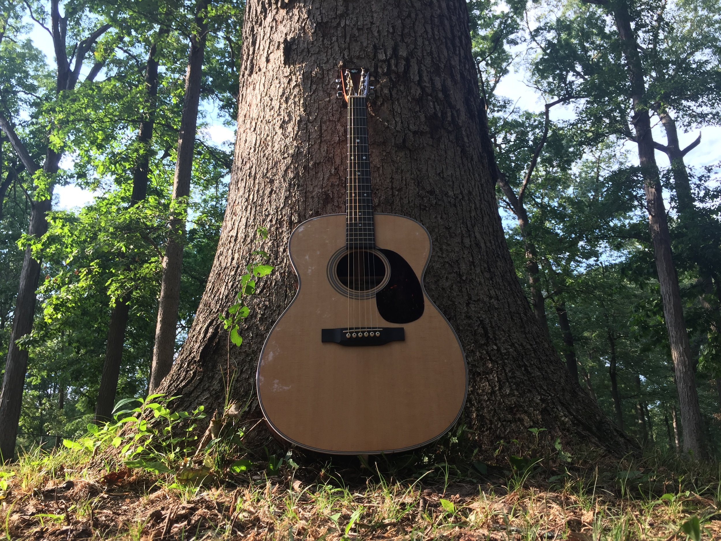 Make An Acoustic Guitar - Woodworking Classes at the Sam Beauford Woodworking Institute