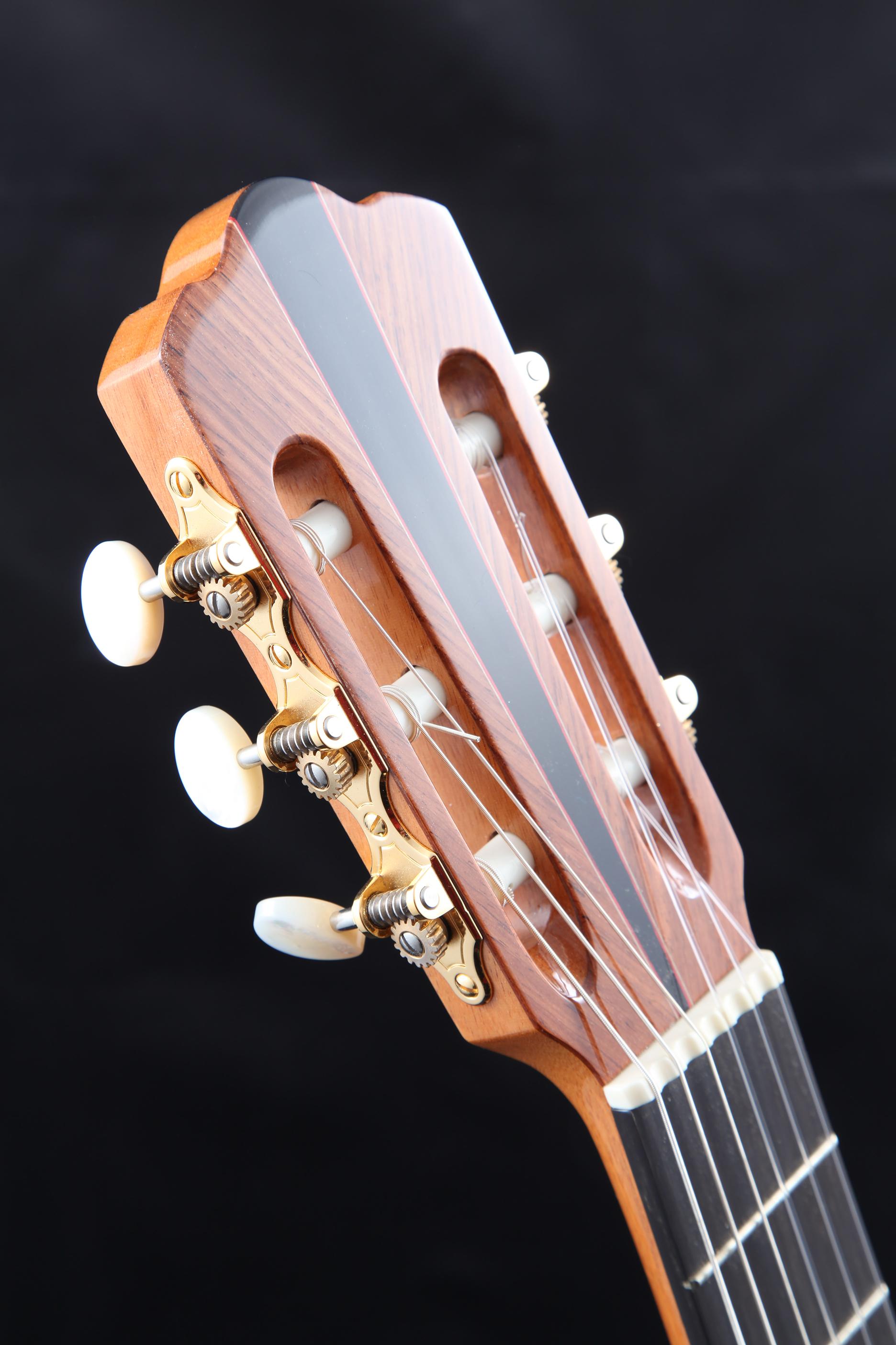 Gary Zimnicki Guitars.jpg