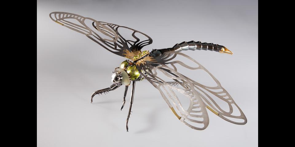 dragonflygreen1.png