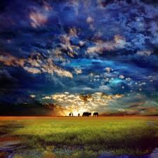 Awaken-your-Dreams-36x36-1-225x225.jpg