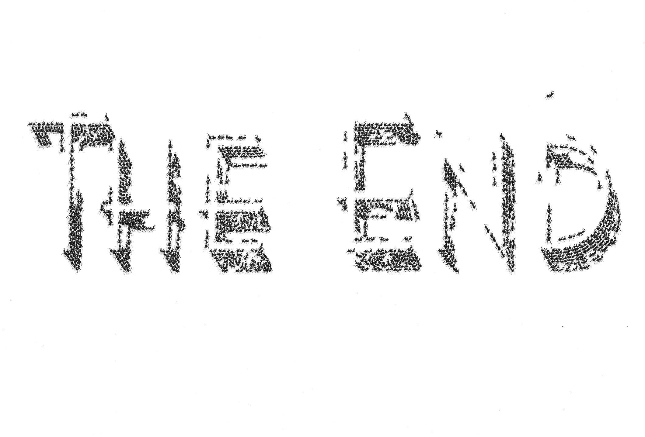 fourmi_the_end_03.jpg