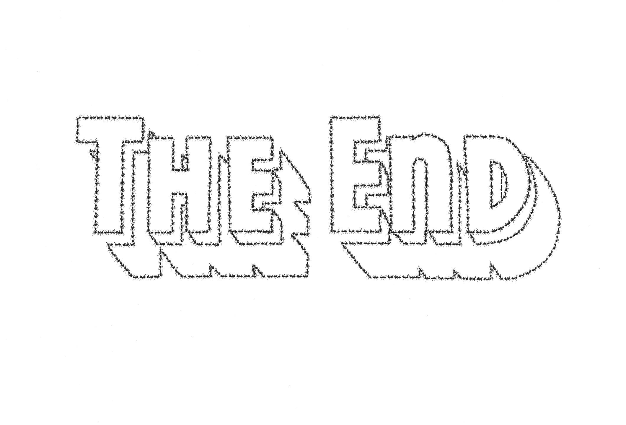 fourmi_the_end_04.jpg
