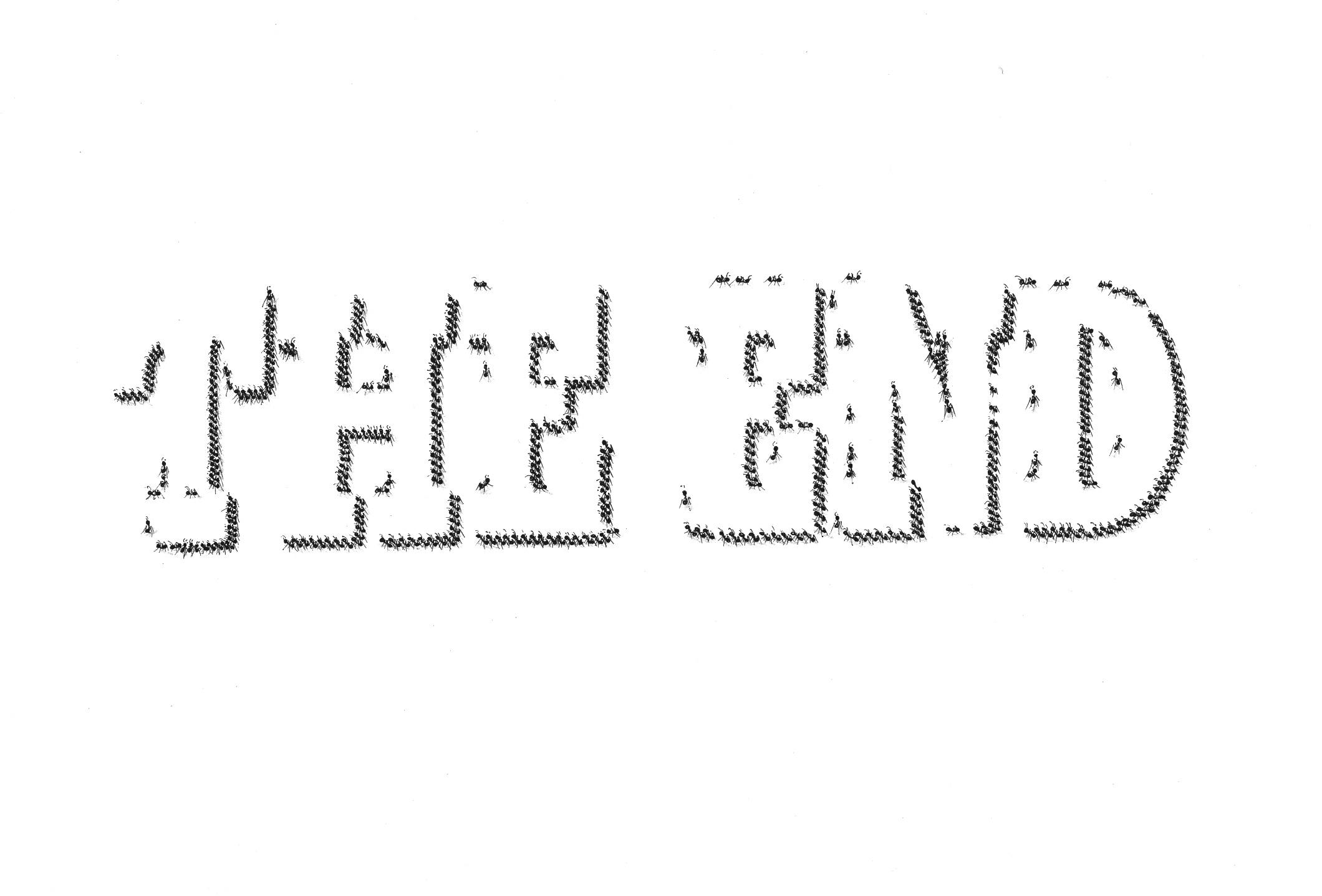 fourmi_the_end_06.jpg