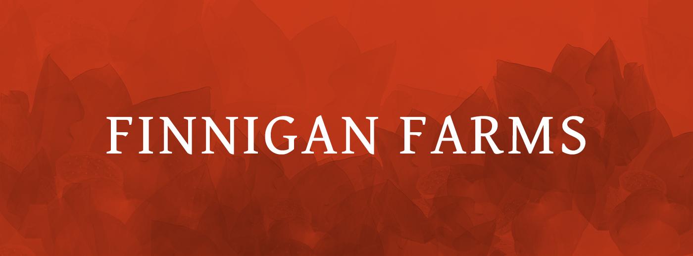Finnigan-GentiumFont.png