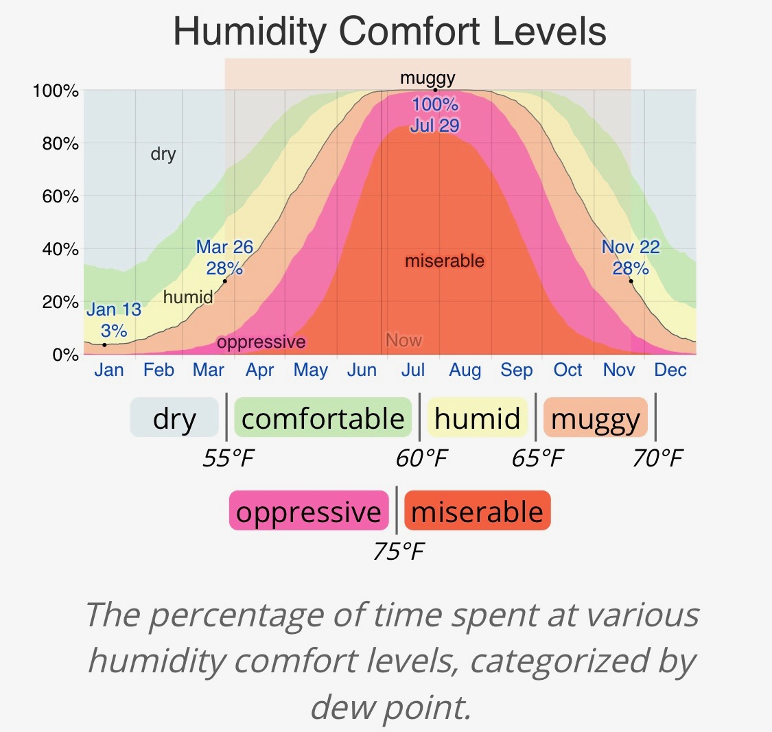 Okinawa Humidity.jpeg
