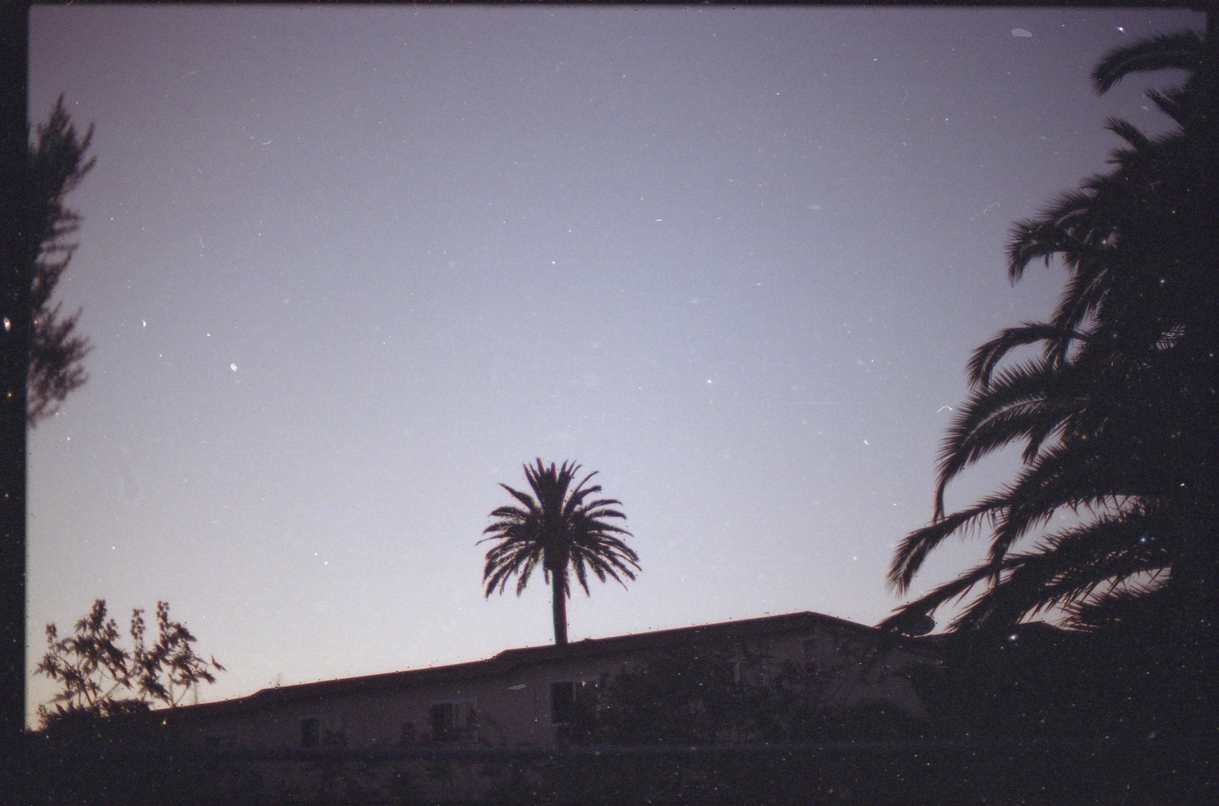 mkl_stars_01.jpg