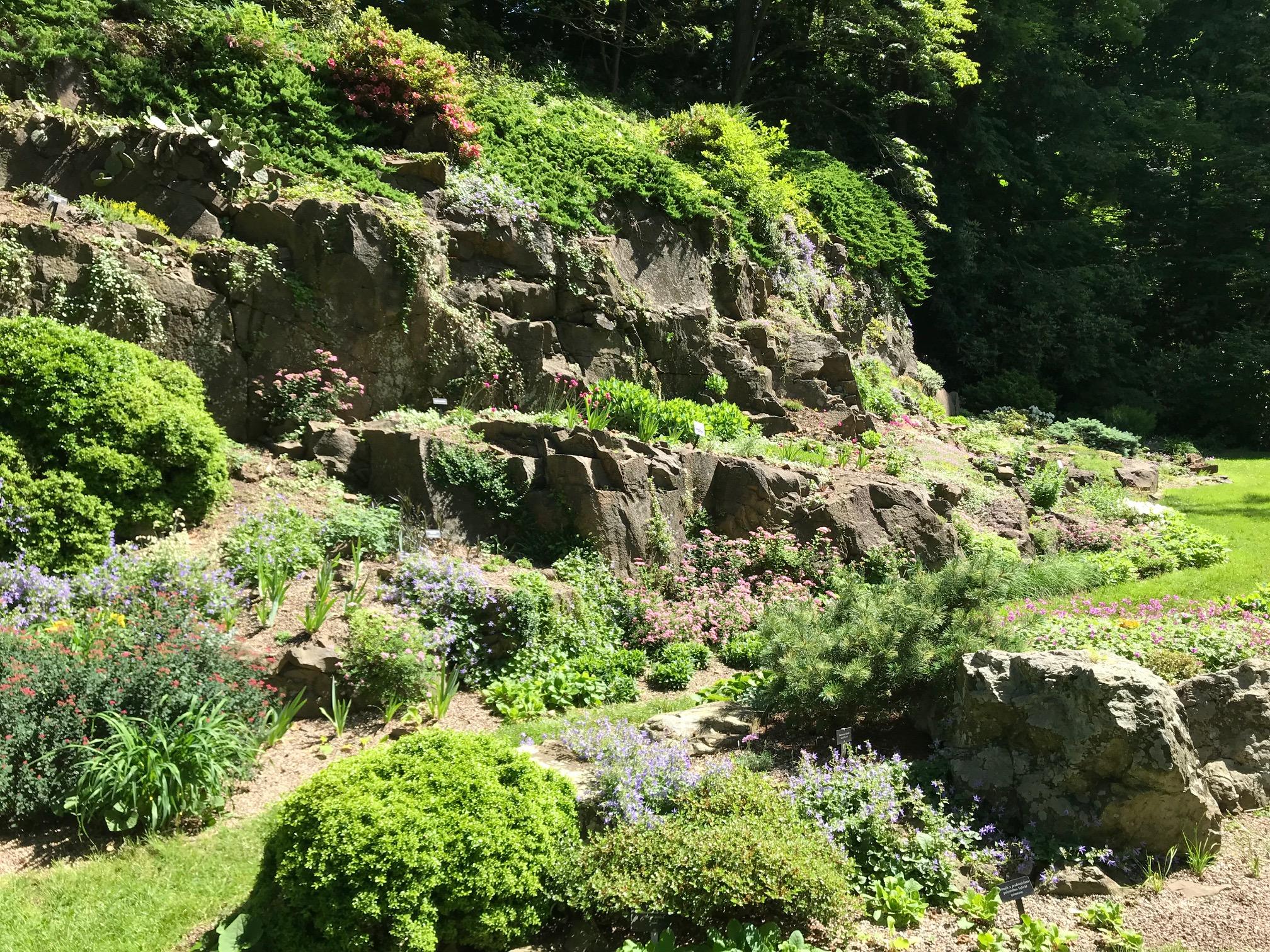 Natural Bluff Rock Garden